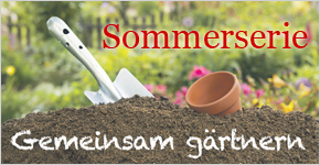 Sommerserie_2017